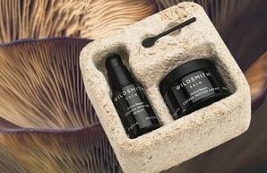 Wildsmith ambalaža od micelija gljiva