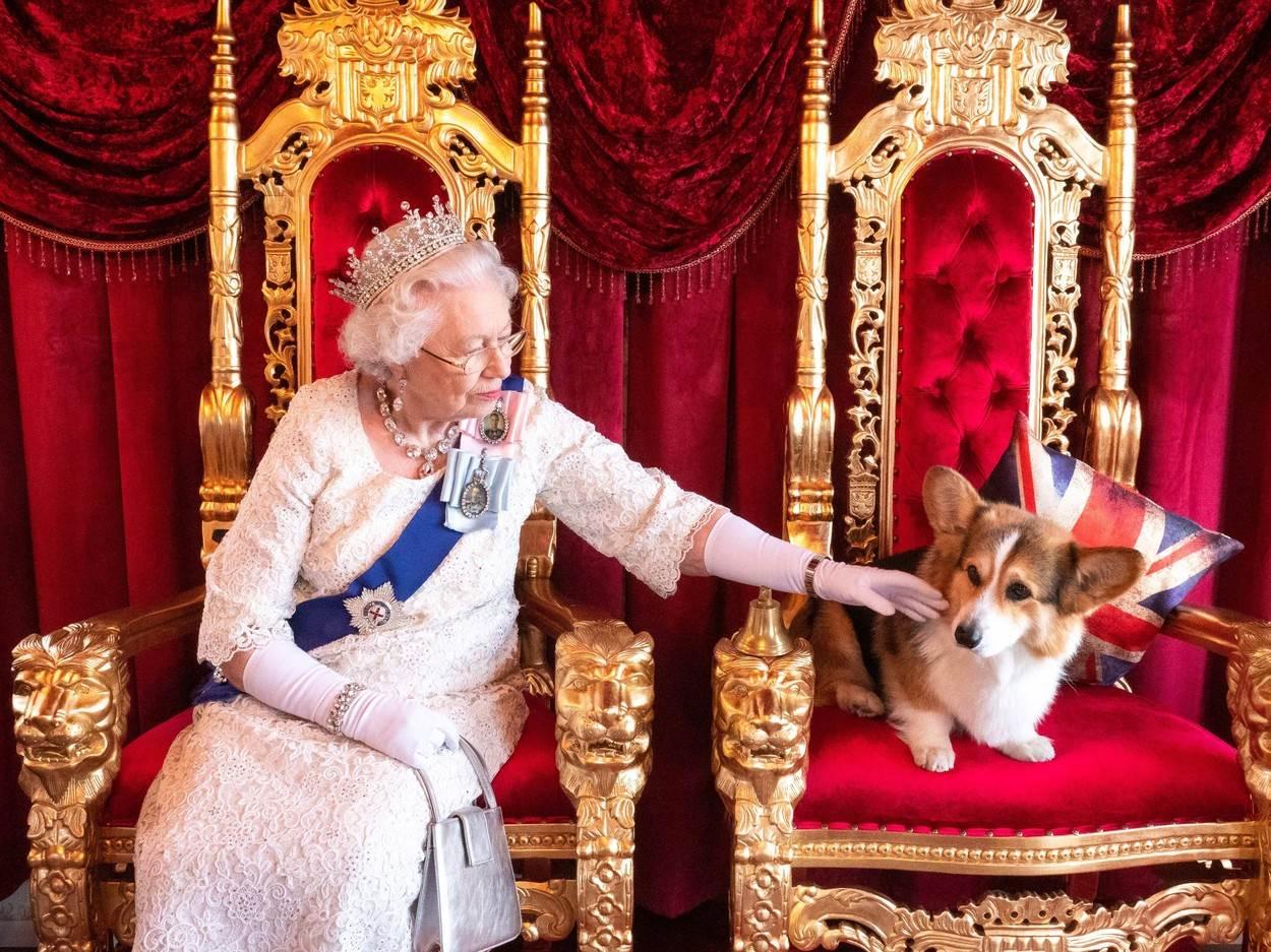 kraljica korgi
